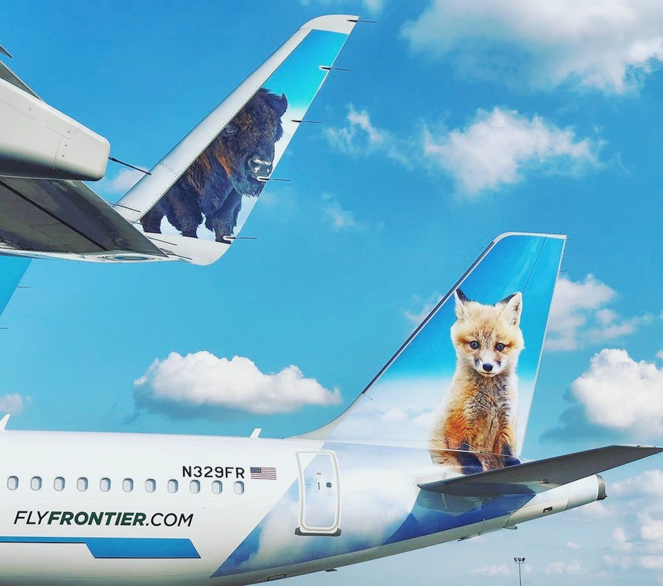 frontier airlines on twitter wiley the bison and trixie the fox enjoying the great outdoors on this tailtuesday mirkoscherrer twitter