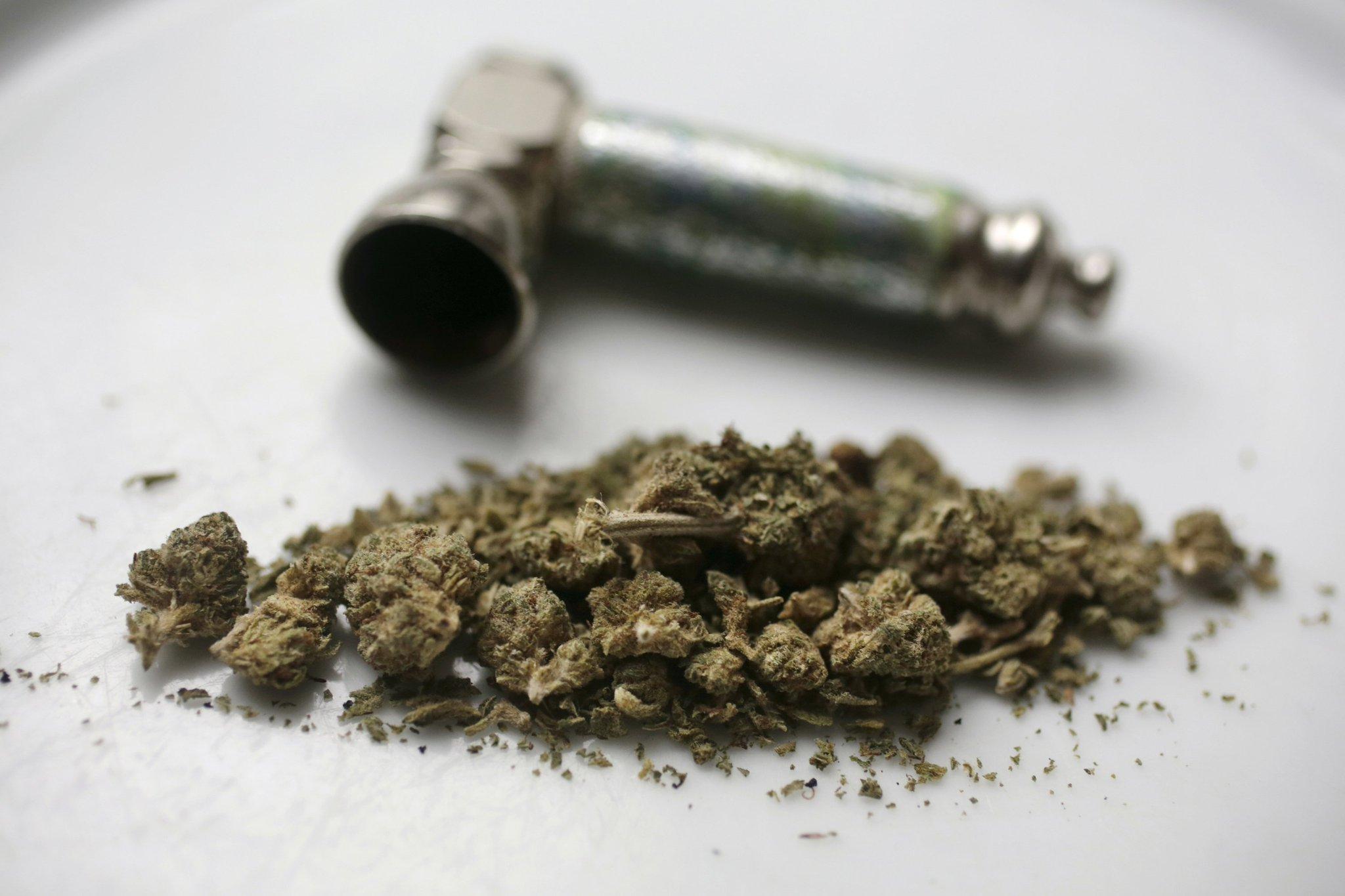 Зерна конопли можно курят сроки роста марихуаны