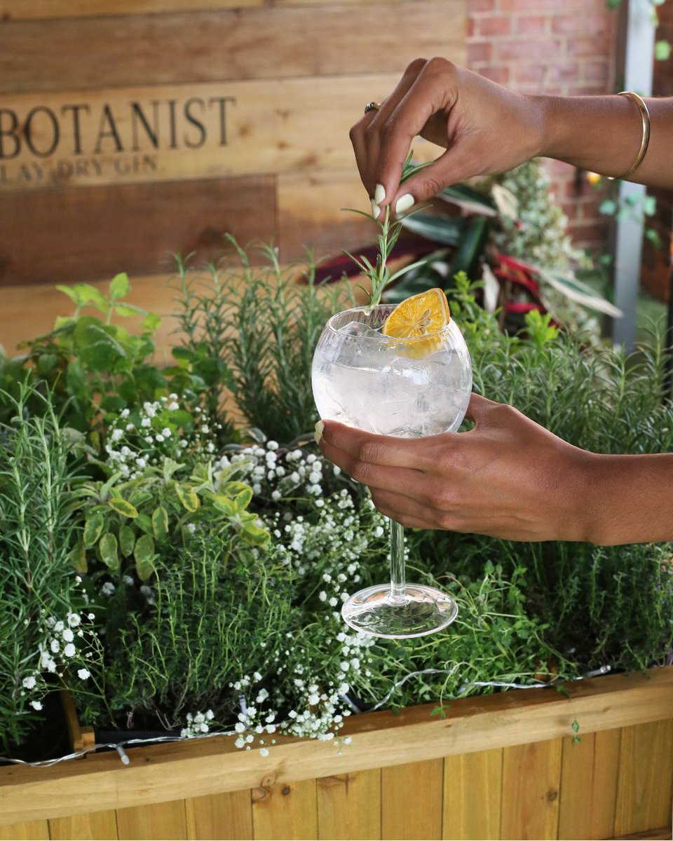 .@thebotanistgin have transformed the Fifth Floor Terrace at #HNKnightsbridge into a foraging garden. You can create your own take on #TheBotanistGin and Tonic and select your own garnish at the unique foraging table until Sunday 30th September - https://t.co/EHkITvtgRa 🌱🌿