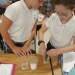 Image for the Tweet beginning: Super Fifth-Grade Scientists checking the