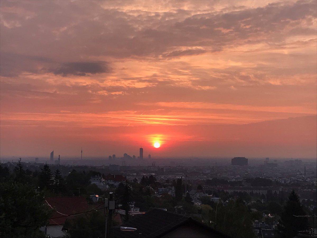 Lothar Lockl On Twitter Guten Morgen Wien