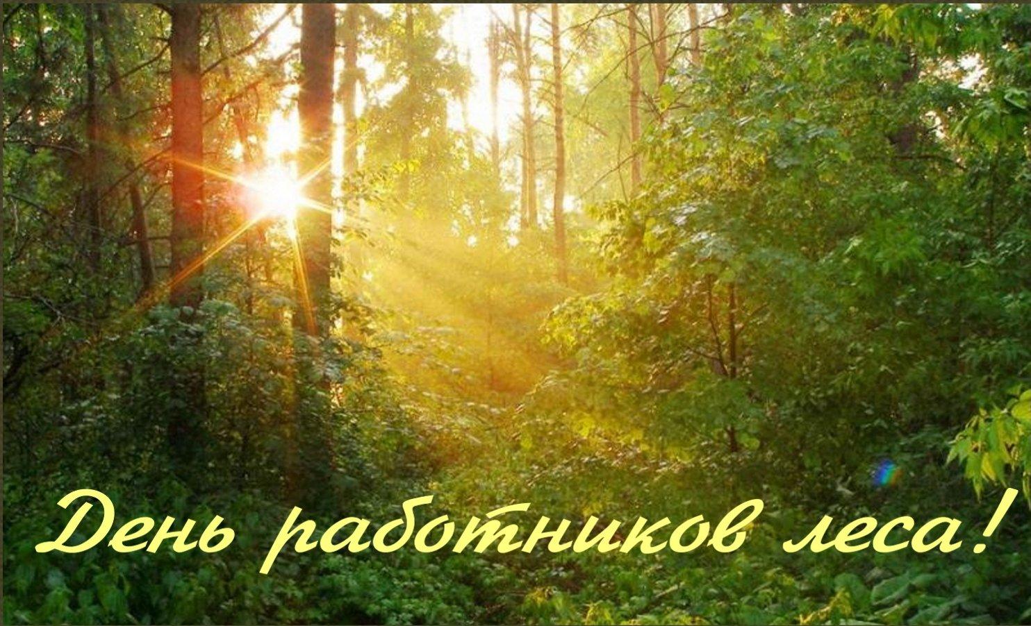 Открытки работника леса