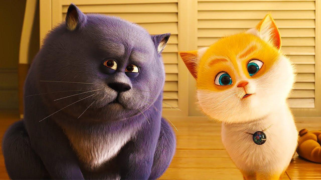 Любимой, смешные картинки про кошку из мультиков