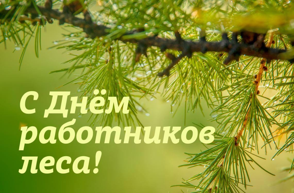 Групповые, поздравление с днем леса на открытке