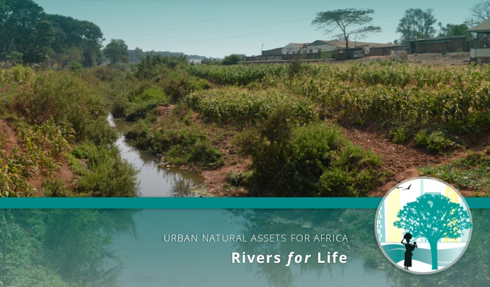 See lessons from our #UNARivers project #cities on how the project helped them plan for their #rivers & how this thinking could help other #Africancities come up with #naturebasedsolutions  Read the whole article on @TC_Africa: https://t.co/Zmo2lGUZLr