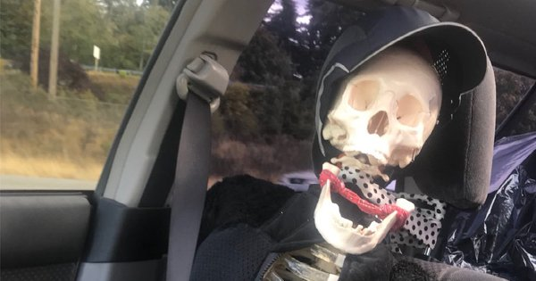 Motorista usa esqueleto de brinquedo para enganar polícia nos EUA https://t.co/2fStIYIIJ9 #PlanetaBizarro #G1