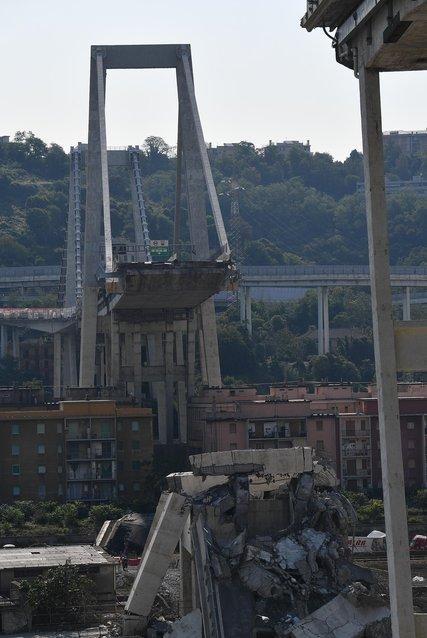 #Genova, la tragedia del #PonteMorandi. Alle 11,36 di un mese fa il crollo del viadotto dove morirono 43 persone. Intere famiglie cancellate. La città oggi li ha ricordati tutti con un minuto di silenzio, il suono delle campane e le sirene al porto. Al #Tg2rai ore 13,00  - Ukustom