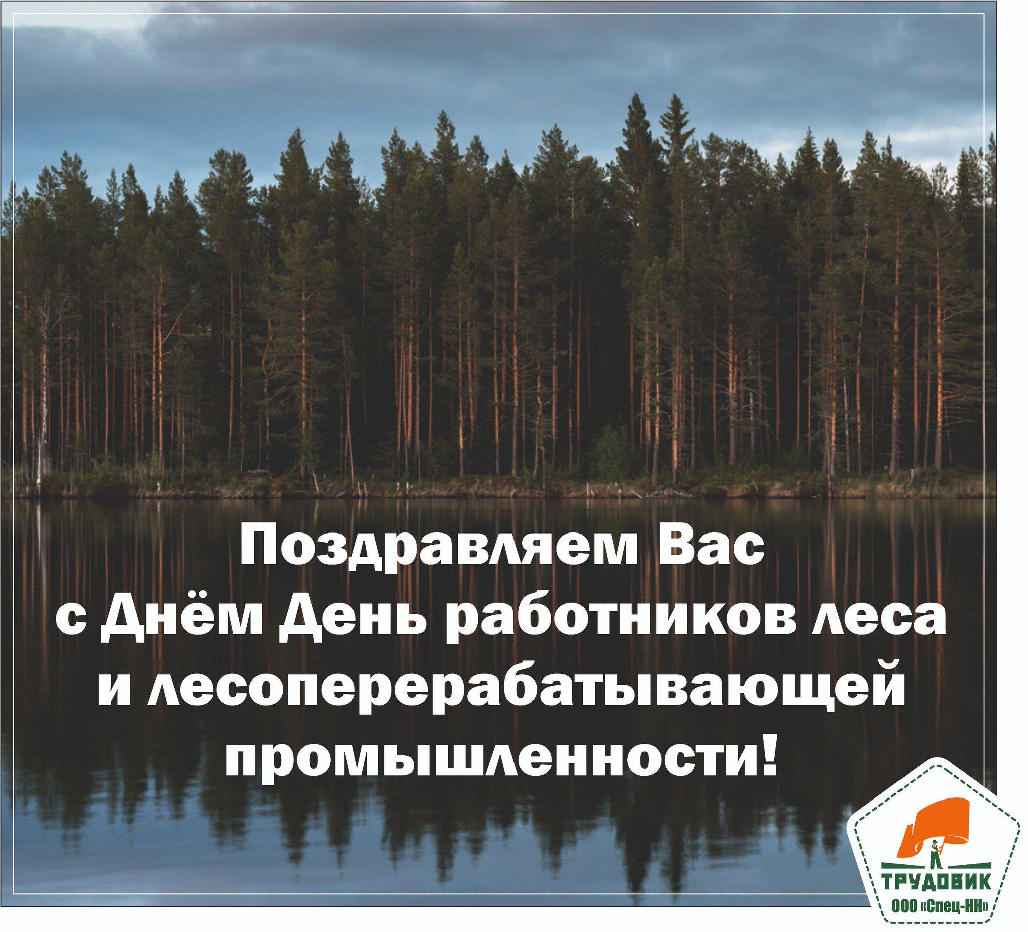 Для мужчины, поздравительные открытки с днем работников леса и лесоперерабатывающей промышленности
