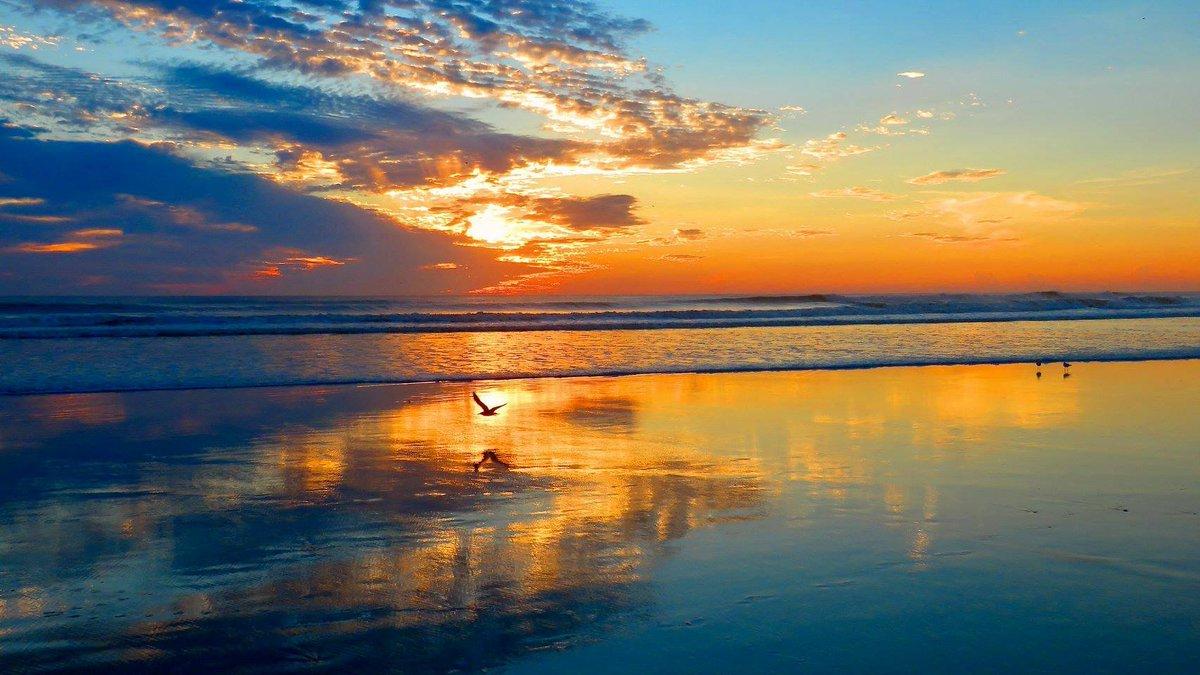 Daytona Beach Vacation Condo Rentals 🌞🏖️👣🌴🌊😎's photo on #FlashbackFriday