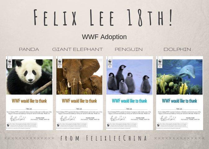 #HappyFelixDay — O fansite Felix Lee China adotou quatro espécies de animais selvagens em extinção ❣️ e colocou o nome do nosso Jjikseu, se não é o presente mais lindo desse mundo? Photo
