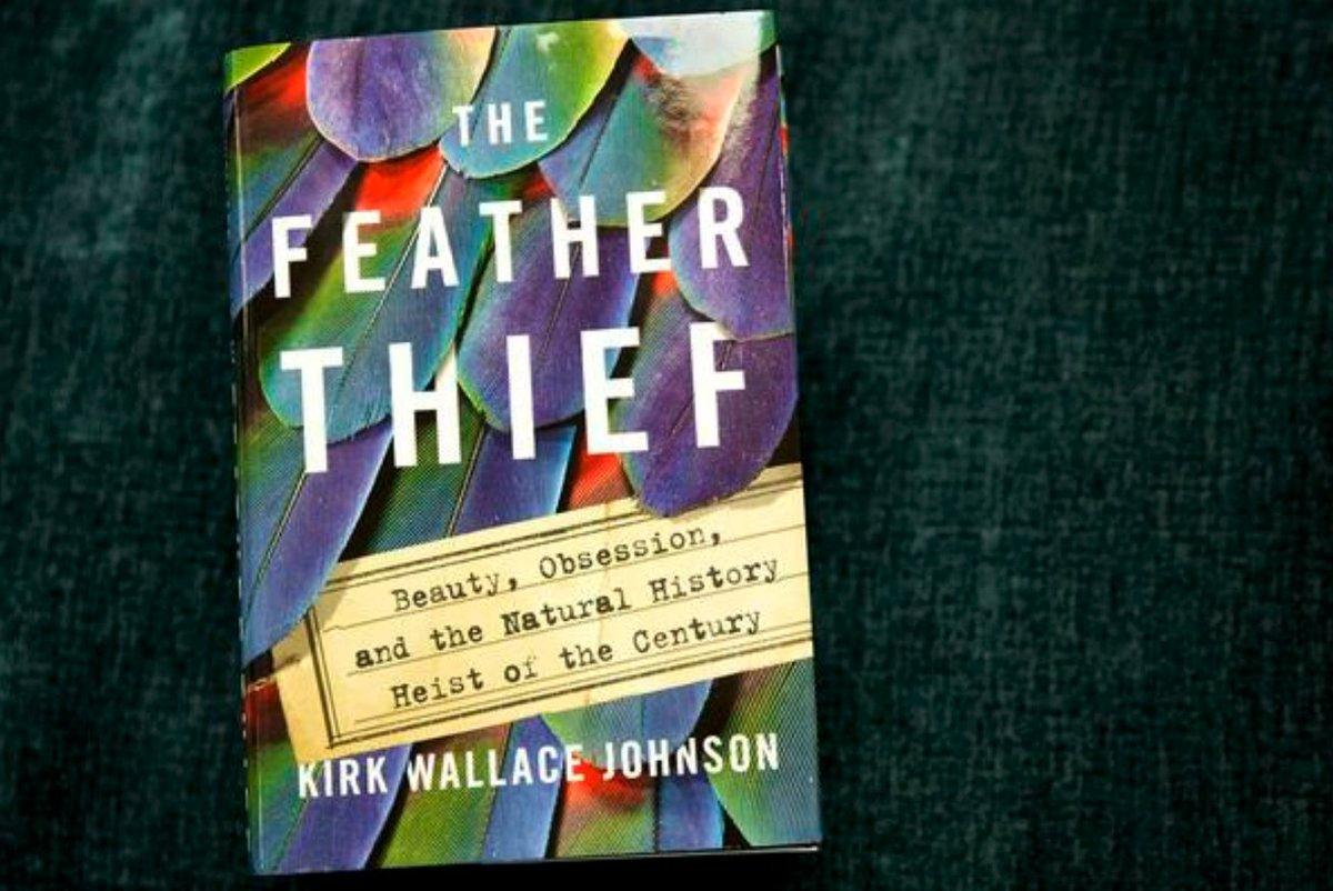 This is the BIRD BOOK EVERYBODYS TALKING ABOUT. Read Ellen Pauls review in the current @BirdingMagazine of Kirk Wallace Johnsons The Feather Thief: tinyurl.com/yba68ptz