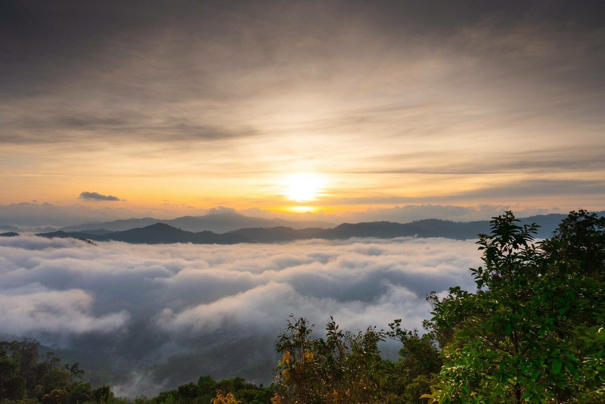 Life is better on the higher ground   The dreamy sea of mist at Aiyoeweng viewpoint, Yala.   #AmazingThailand #OpenToTheNewShades #Slowlife #Travel #ReviewThailand #Yala  #Thailand<br>http://pic.twitter.com/Rk1BpLYUtd