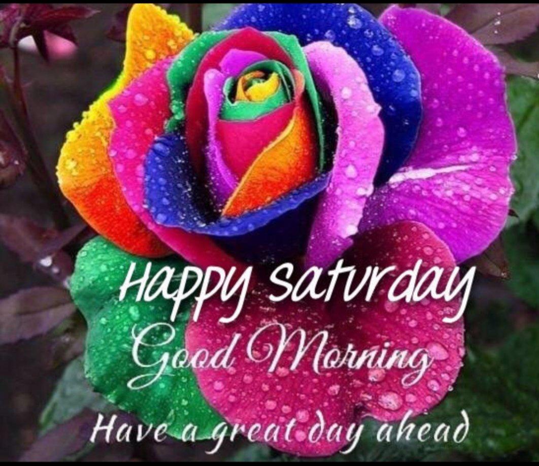 Trish Rawlins On Twitter Good Morning Happy Saturday Goodmorning