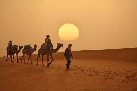 科学者のある計画が、サハラ砂漠に図らずも雨と緑をもたらしそう:米研究 ──「砂漠化のフィードバックメカニズム」を逆転させる…… https://t.co/RrNhZc2cLH  #サハラ砂漠 #気候 #サイエンス