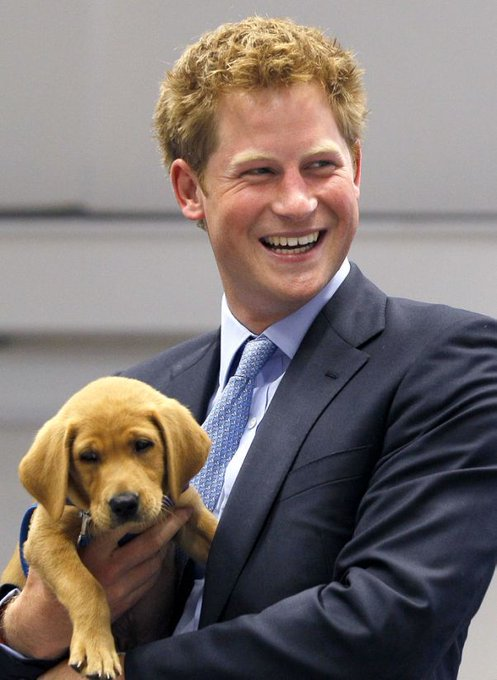 Happy birthday, Prince Harry! Moments that made us love him more