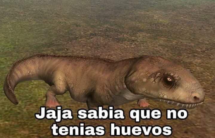 1979 On Twitter Los Memes De Dinosaurios Me Devolvieron Algo Que Creia Perdido Dedica una frase de amor romntica y original. devolvieron algo que creia perdido