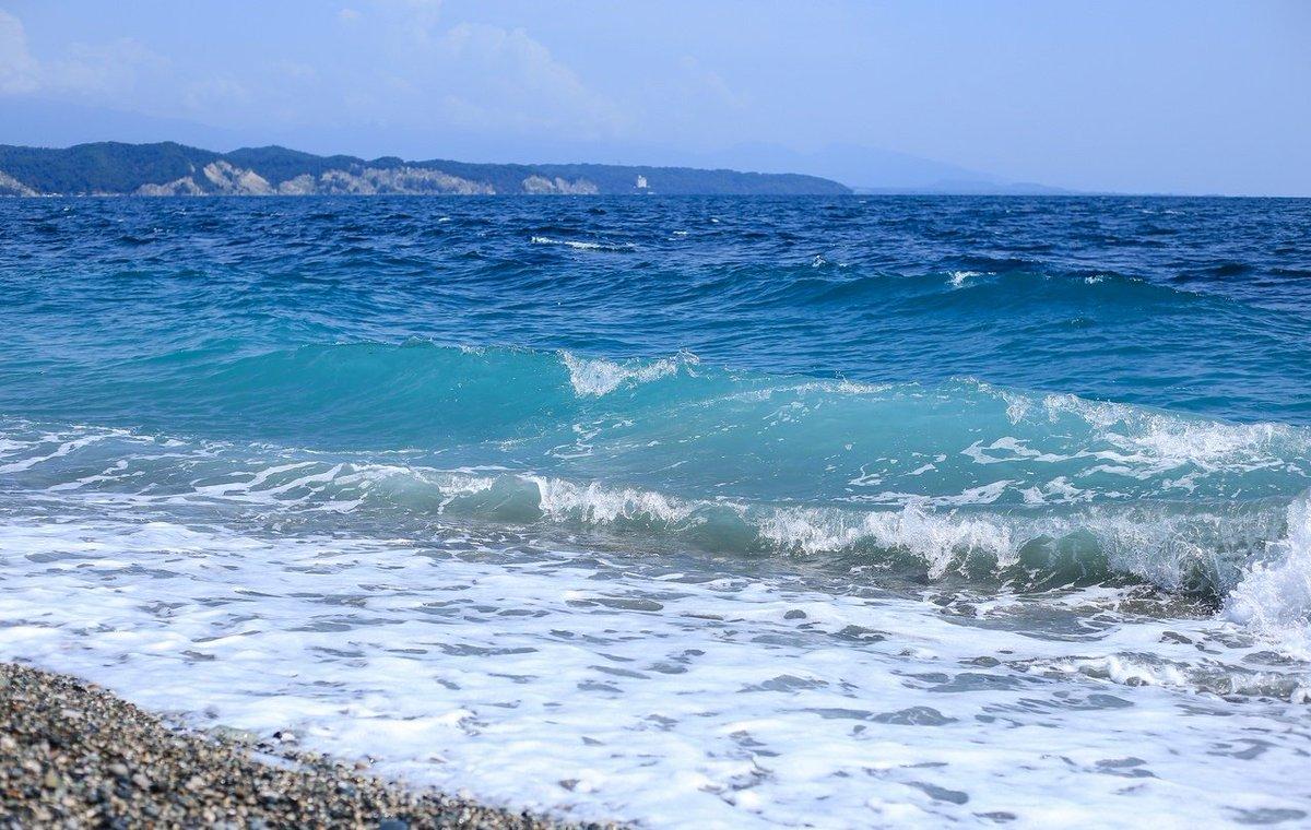 картинки черное море абхазия организациях ип, которых