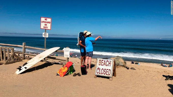 A swimmer at a Cape Cod beach died in what experts believe is the first fatal shark attack in Massachusetts in more than 80 years Photo