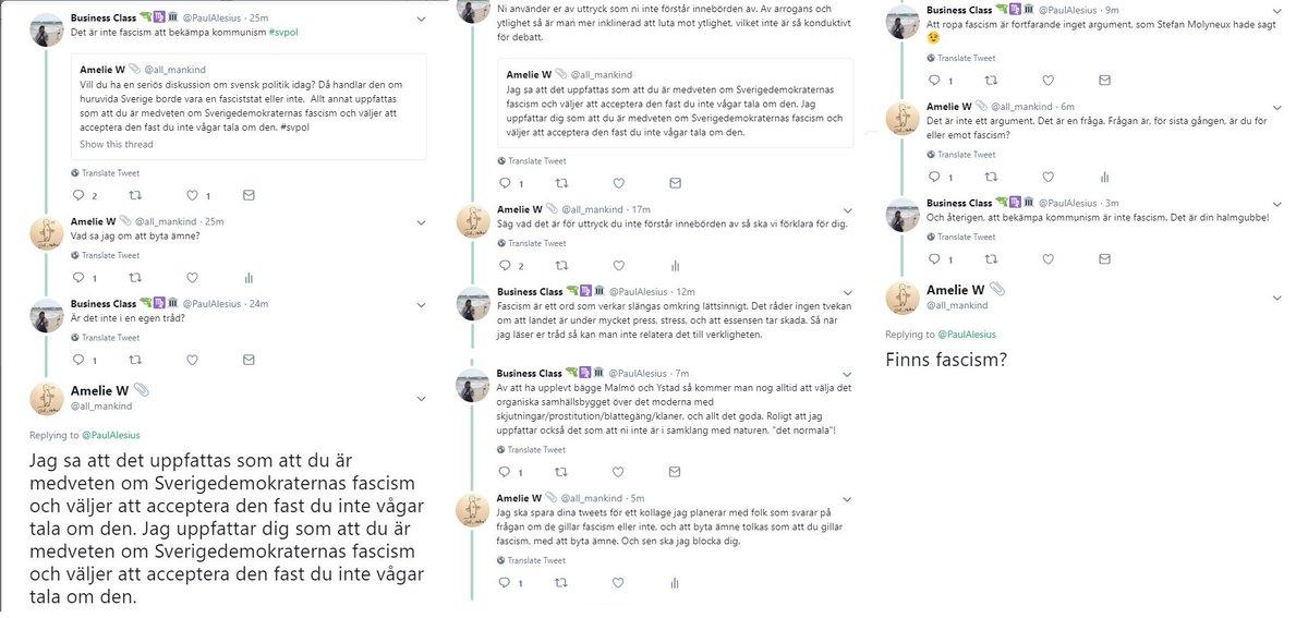 Usa som fasciststat