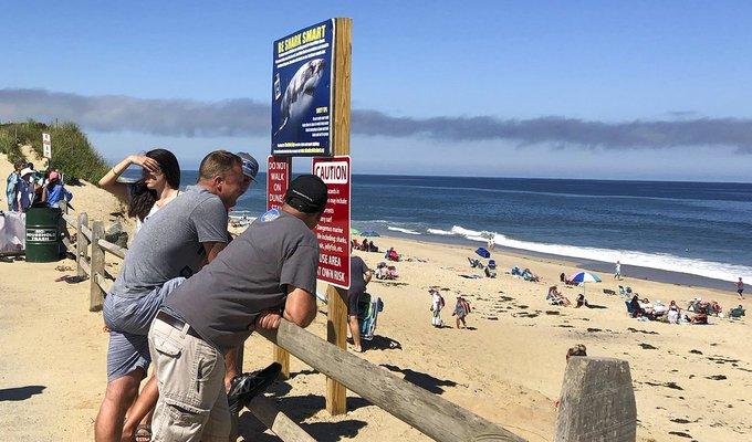 Sangriento día en #CapeCod: Tiburón mata a turista >> Photo