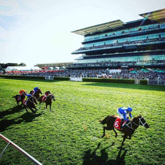 Hugh Bowman gliding past the winning post on WINX for her 27th victory in a row yesterday at Royal Randwick. Great 📷 by @evohood // #winxhorse #gowinx Photo