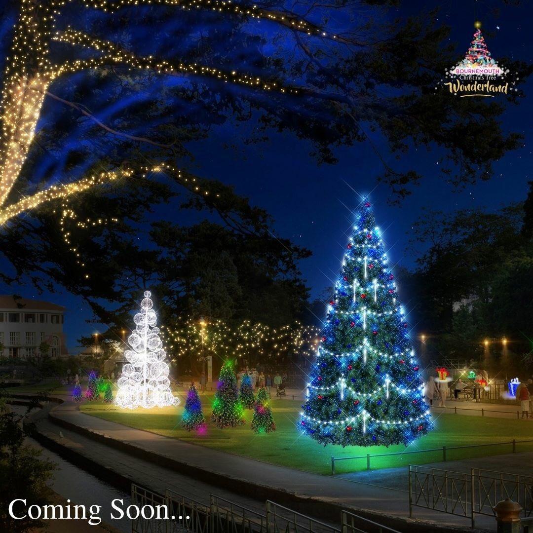 Christmas Tree Wonderland Bournemouth Coastal Bid.Christmas Tree Wonderland On Twitter It S Officially 100
