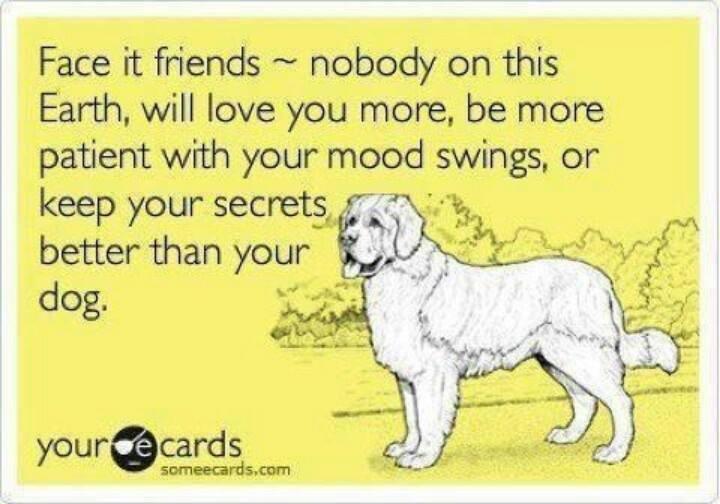 That's loyalty!... #dogs #doglovers #thepetsbiz #petsitesunite