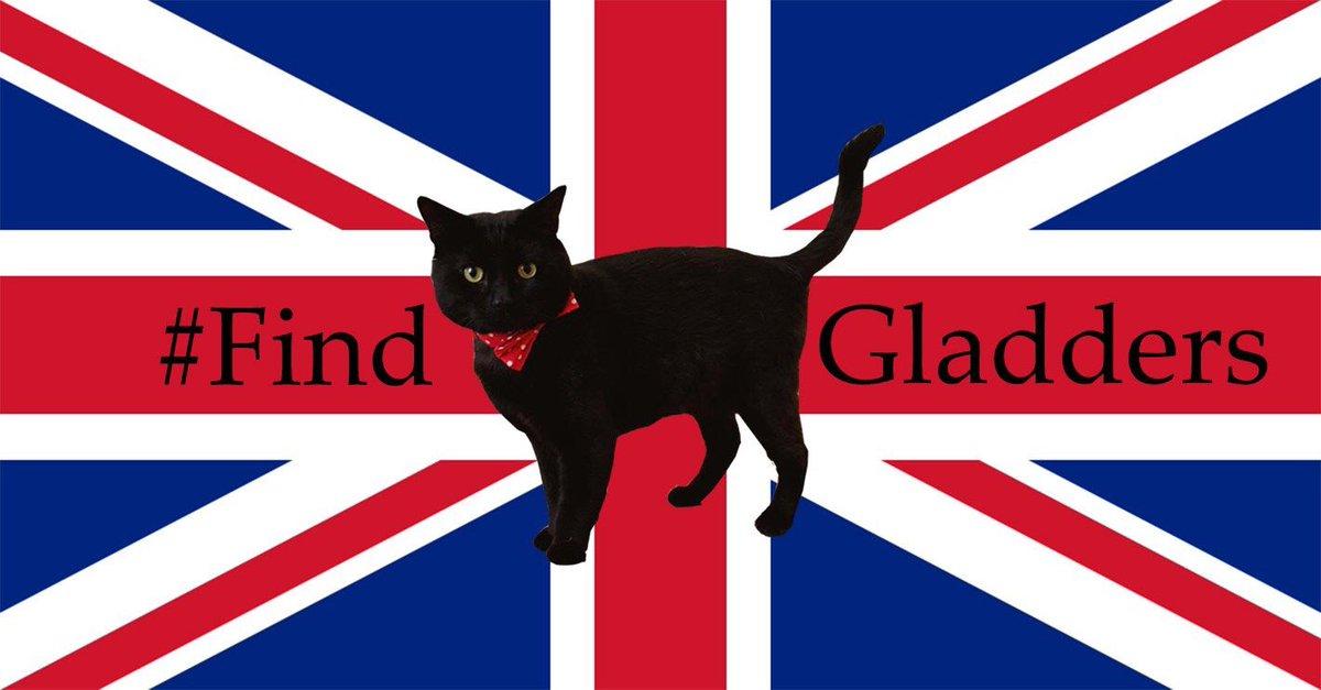 Tweetstorm! #FindGladders #FindGladstone Keep Retweeting. Keep looking. #Whitehall #Westminster