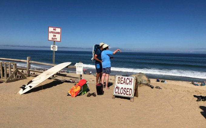Shark kills man boogie boarding off Cape Cod beach as sightingsincrease Photo