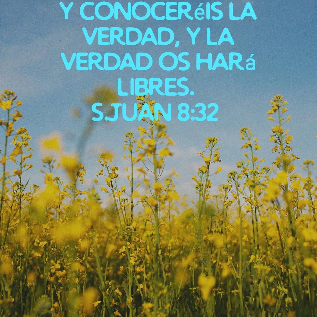 """Mensaje De Esperanza. ( Lisette Derout) on Twitter: """"y conoceréis la  verdad, y la verdad os hará libres. S.Juan 8:32 RVR1960… """""""