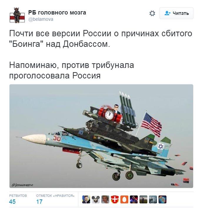 Слідча група проаналізує нову інформацію з Росії про катастрофу MH17, - прокуратура Нідерландів - Цензор.НЕТ 8014