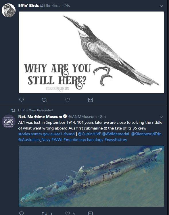 Effin' Birds on Twitter: