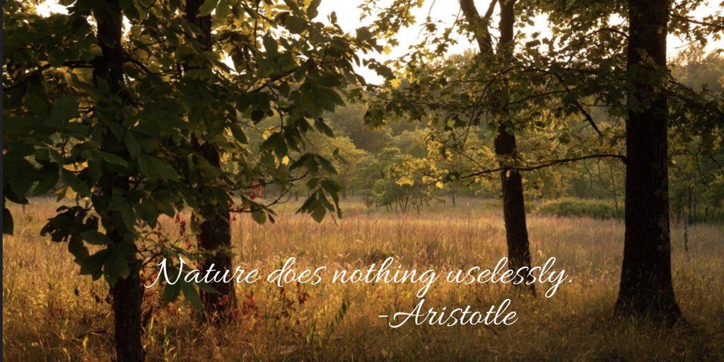 "Missouri DNR on Twitter: """"Nature does nothing uselessly."" — Aristotle  #MotivationMonday… """