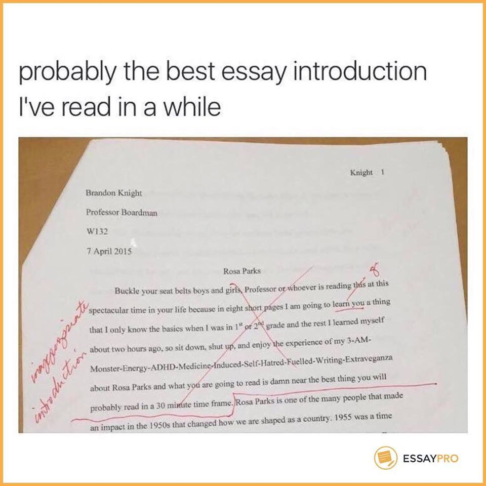 Essaypro On Twitter Send This Post To Your Smart Friend  Essaypro On Twitter Send This Post To Your Smart Friend   Lol  Essaypro Essay Writemyessay University College Funny
