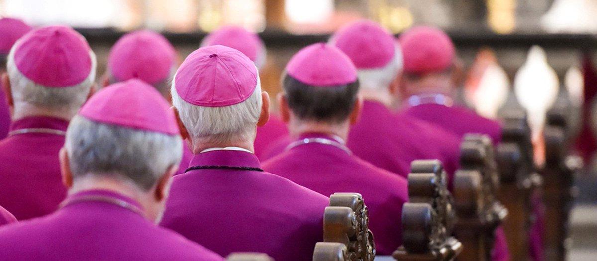 """Dossier Nrc su #abusi in #Olanda. Van Roosendaal (Conferenza episcopale): """"casi già affrontati"""". """"Importante per la Chiesa e per le vittime che si faccia verità""""  https:// www.agensir.it/?p=503882  - Ukustom"""