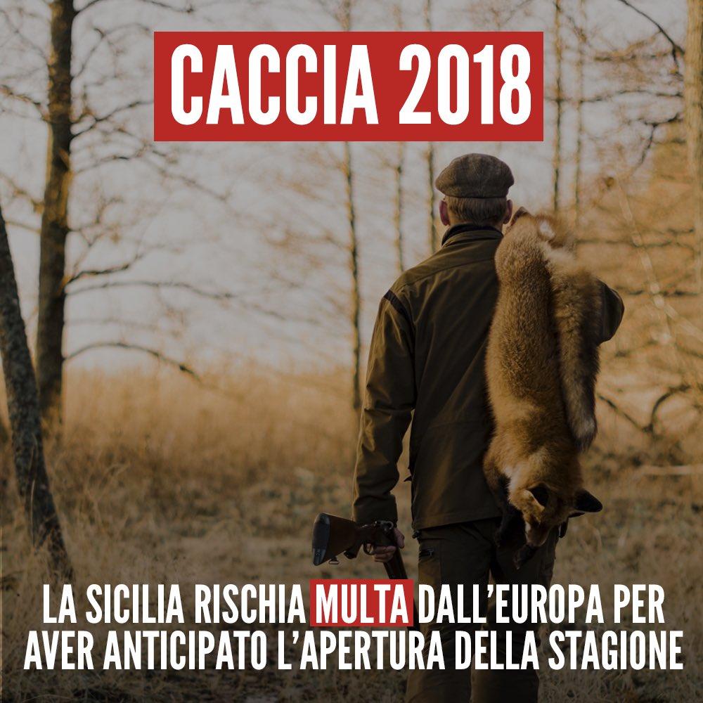 Volete sapere l'ultimo scempio targato #Musumeci in #Sicilia? Apertura anticipata della #caccia e stop a molte regole che garantivano la #biodiversità e tutela della #fauna e nessun controllo. Ho sottoposto il caso alla @EU_Commission https://goo.gl/S7KTr8  - Ukustom