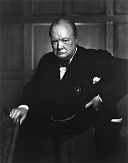 'Some people regard private enterprise as a predatory tiger to be shot. Others look on it as a cow they can milk. Not enough people see it as a healthy horse, pulling a sturdy wagon.' --Winston Churchill