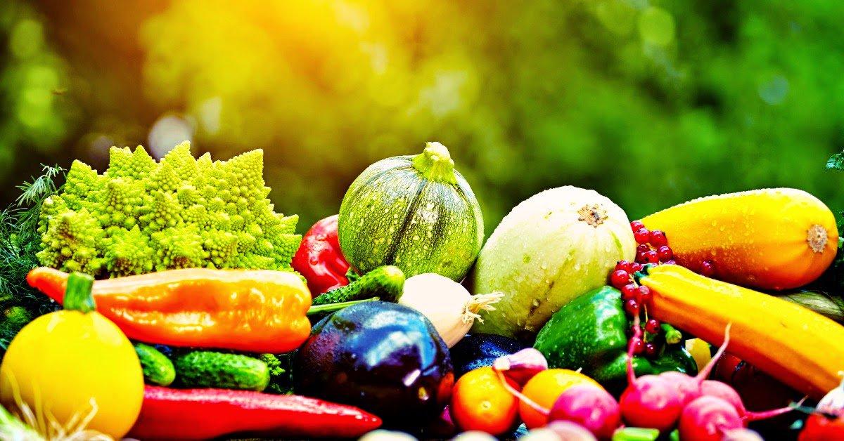 Ten Natural Life Extension Tips