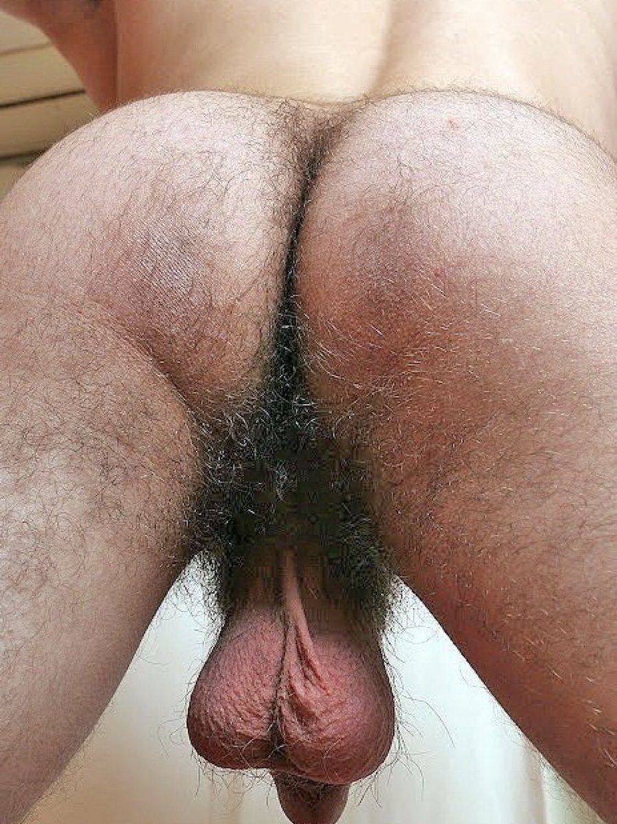 Men With Hairy Ass And Balls
