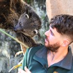 Perth Zoo Twitter Photo
