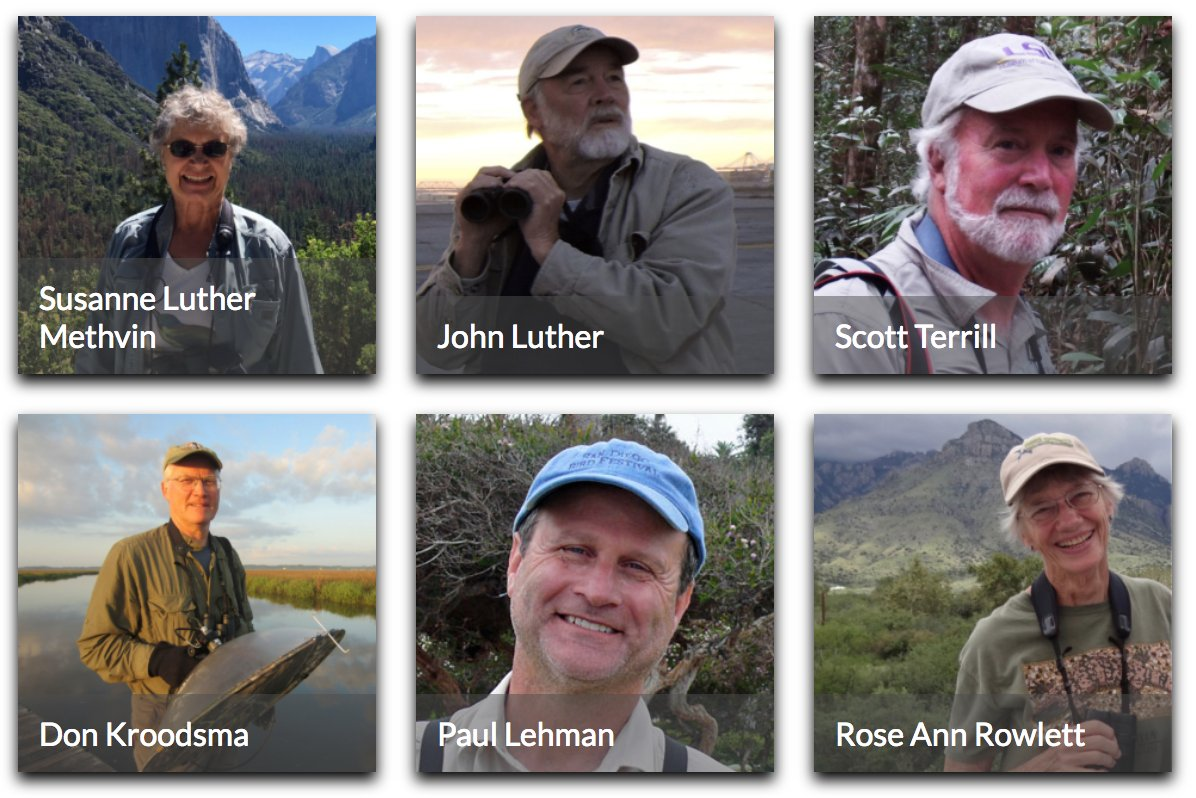 Listen to the Voices of Birding--SUSANNE LUTHER METHVIN, JOHN LUTHER, SCOTT TERRILL, DON KROODSMA, PAUL LEHMAN, and ROSE ANN ROWLETT. In-depth interviews here: tinyurl.com/ybetkr5y