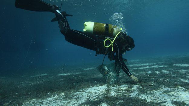 #Lampedusa senza #plastica , ripuliti i fondali della #Tabaccara : raccolti 15 sacchi di rifiuti http://agrigento.gds.it/2018/09/18/lampedusa-senza-plastica-ripuliti-i-fondali-della-tabaccara-raccolti-15-sacchi-di-rifiuti_917685/?utm_medium=feed&utm_source=twitter.com&utm_campaign=Feed%3A+gds_twitter_feed  - Ukustom