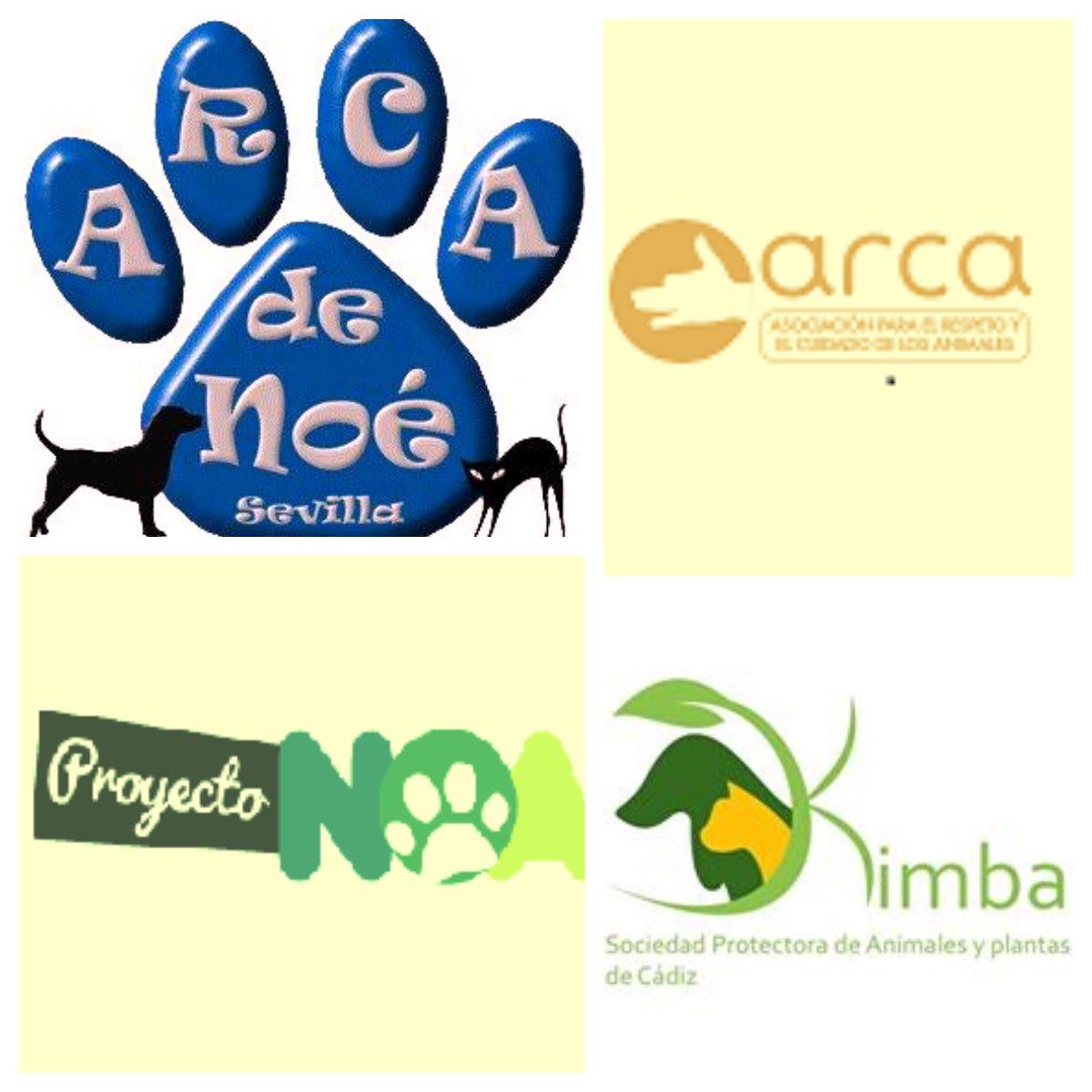 #Ayudameaayudar El jueves cumplo 50 años y quiero celebrarlo colaborando con 4 protectoras de animales. Si consigo 5.000 rt's les haré 1 aportación económica y habré conseguido lo más importante,darlas a conocer @ProyectoNoa @ArcadeNoeSevill @Arca_Sevilla @RefugioKimba 🐶🐱