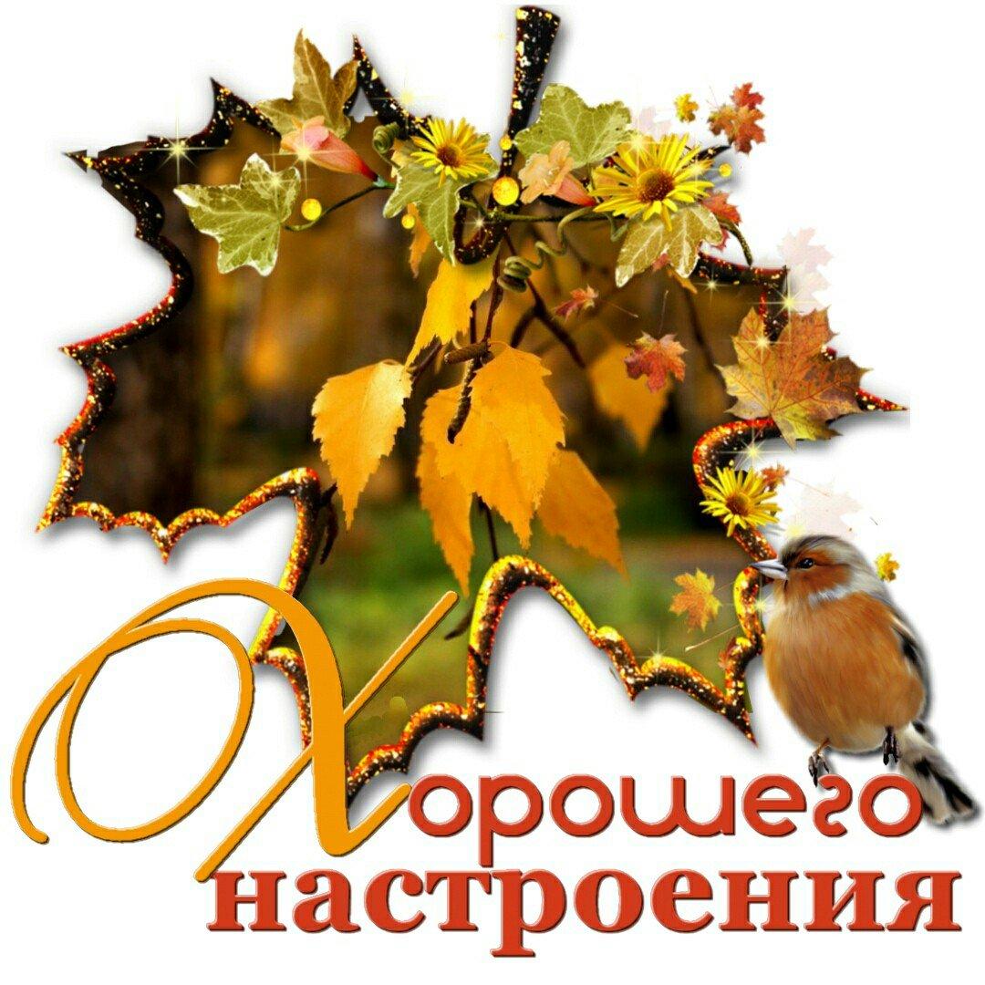 Осеннее настроение картинки с надписью, бухгалтерии