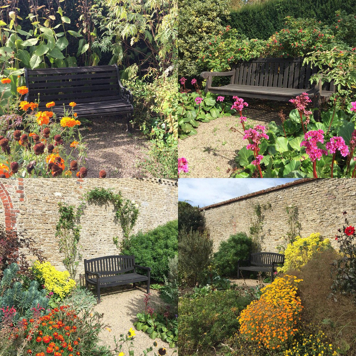Are you sitting comfortably? Which seat would you choose to enjoy the autumn sunshine?😎@Loseleyevents #walledgarden #autumn #gardenbench #autumnweather #autumnwedding