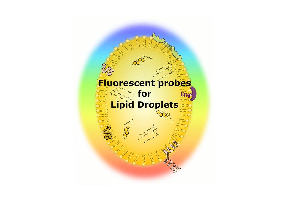 pdf The Physics of Granular