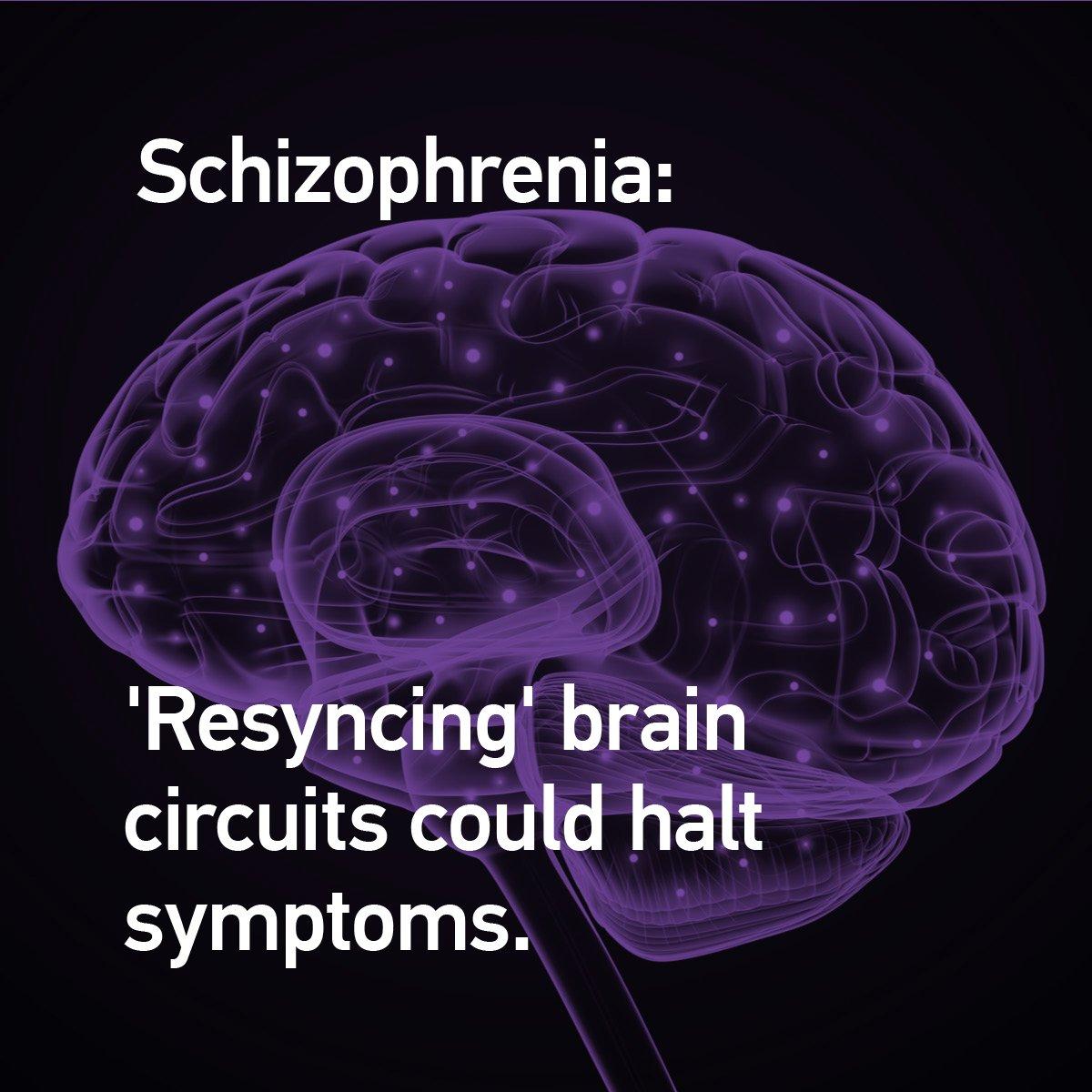 Halting Schizophrenia Before It Starts >> Specialtyrx On Twitter Trending Schizophrenia Resyncing Brain