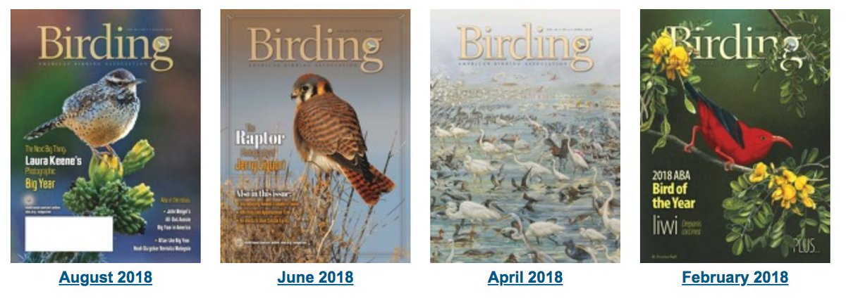 In the current issue of the @ABAs Birding magazine: articles by Tony Leukering, Laura Keene, Noah Strycker, John Weigel, Paul Hess, and others. READ THE ENTIRE ISSUE ONLINE (ABA member account required for full access): tinyurl.com/ya287yey