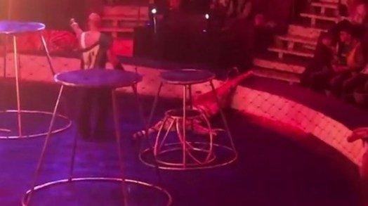 El impactante momento en que una tigresa sufre convulsiones en pleno show en un circo de Rusia (Video) https://t.co/Vlq8eJQu7P