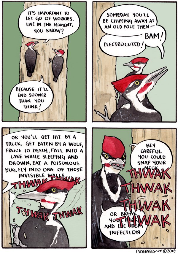 Comic time, birdies! falseknees.com/337.html #falseknees #thwakthwak